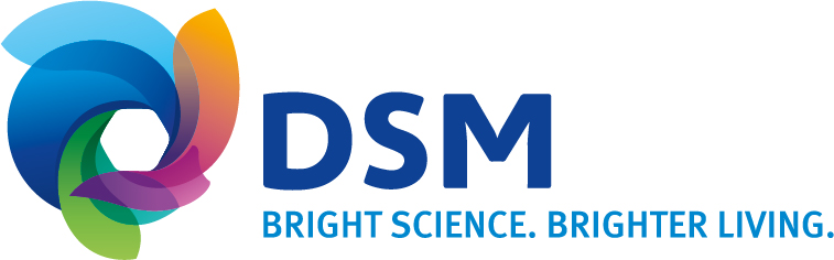 DSM Germany GmbH